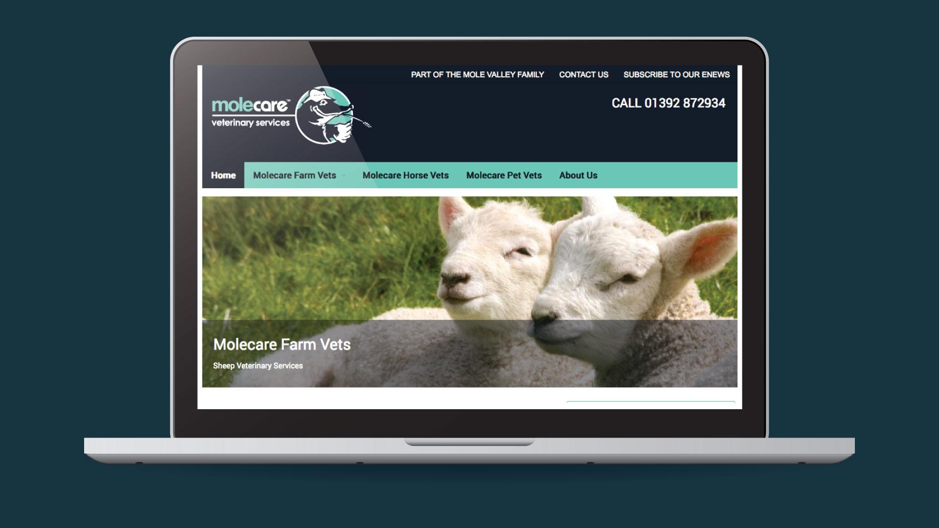Molecare Vet Services Website Development in Devon